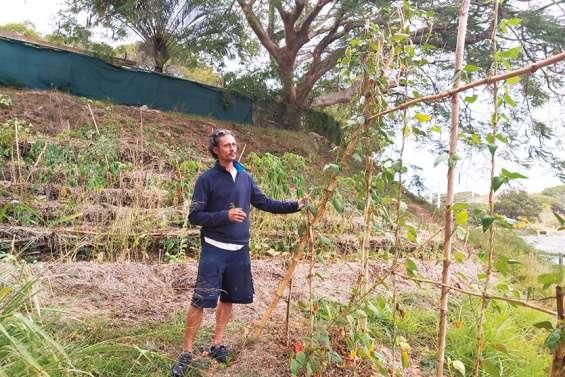 Samuel Breton veut faire pousser des vergers en ville