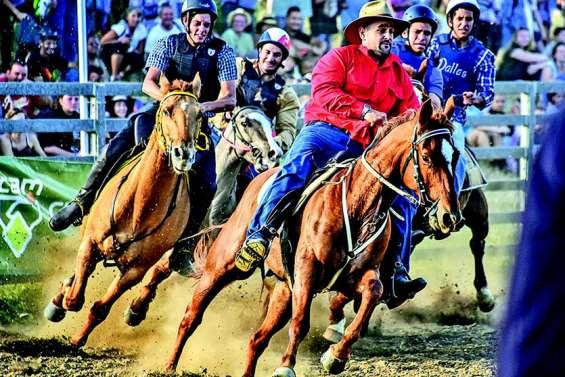 Le cheval : une filière qui pèse 2 milliards