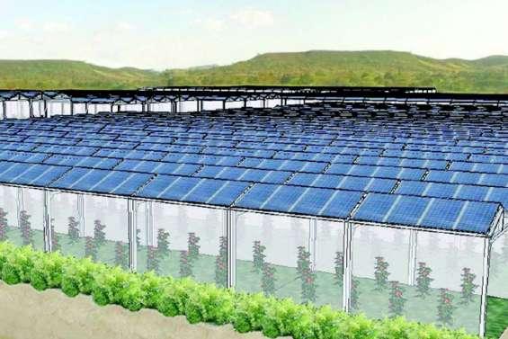 Energies renouvelables : quels sont les projets d'Enercal ?