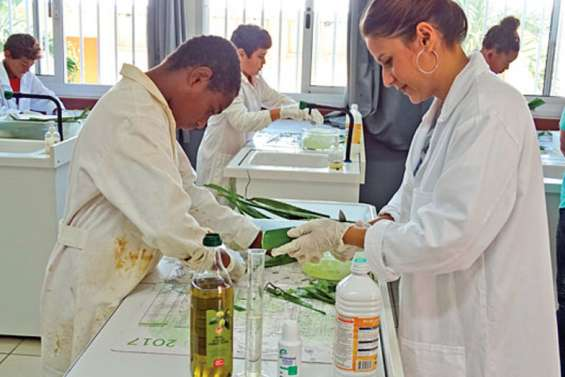 Des collégiens ont appris à fabriquer du gel hydroalcoolique