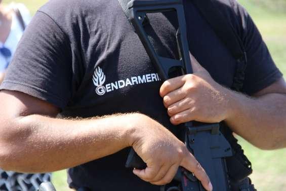 Les gendarmes démantèlent un réseau de trafic de cannabis entre Canala et Nouméa, huit interpellations
