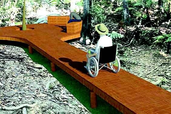 Cinq projets loisirs pour les personnes handicapées