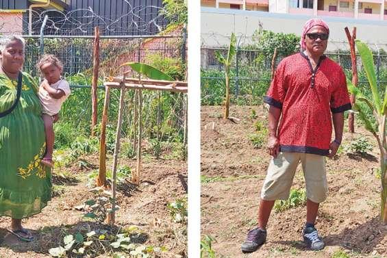 Les nouveaux jardins familiaux des Tours entre de bonnes mains
