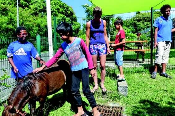 Grâce au club Kiwanis, c'est la ferme  qui vient jusqu'aux enfants de l'IME