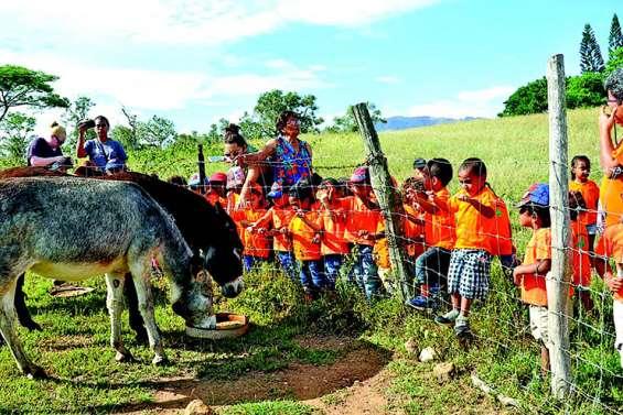 Une visite à la ferme de Koligoh