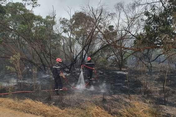 Un incendie combattu à Boulouparis