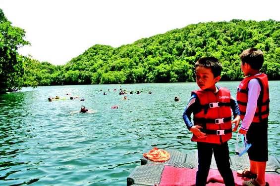 Le lac aux méduses attire de nouveau les visiteurs