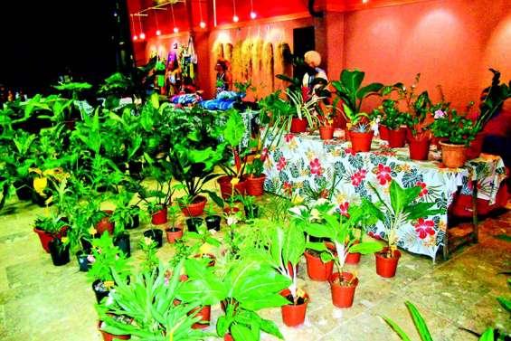 Les Floralies ont pris racine au centre socioculturel