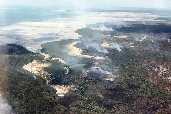 L'île Fraser ravagée par les feux de forêt