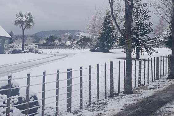 Gros coup de froid en Nouvelle-Zélande