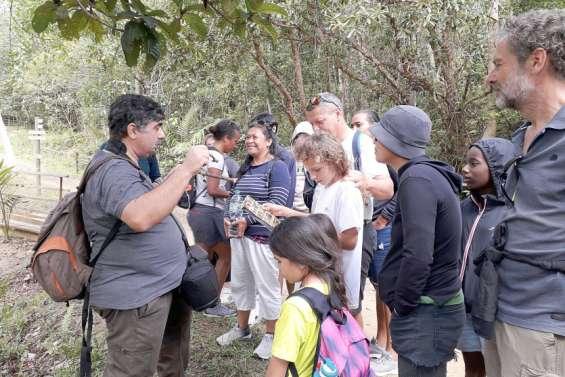 Farino : Sortie champignons aux Grandes Fougères