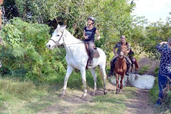Trois nouveaux sentiers équestres ouverts au public sur le domaine de Déva