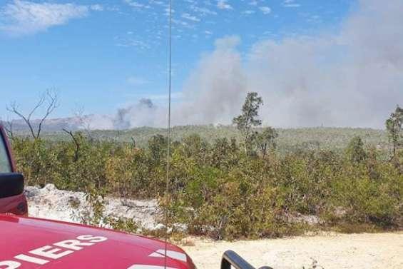 Un incendie détruit 200 hectares de végétation à Poum