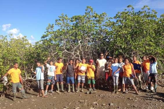 Les élèves de cinquième de Canala et de Kouaoua en sortie dans la mangrove