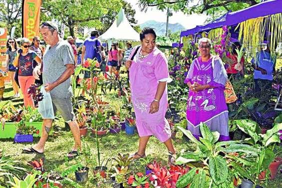 Dumbéa : 140 exposants attendus ce week-end au salon Nature et jardins au parc Fayard