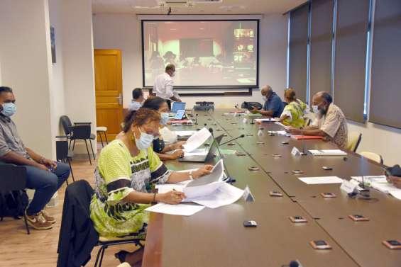 Politique : la province des Îles a adopté une série d'aides financières aux entreprises