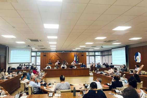 Les élus de la province Sud se sont penchés sur les orientations budgétaires