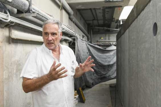 Nouméa : la réouverture de l'Aquarium pourrait finalement avoir lieu en août