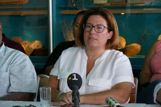 La province Sudprépare la validation de la vente de l'usine du Sud