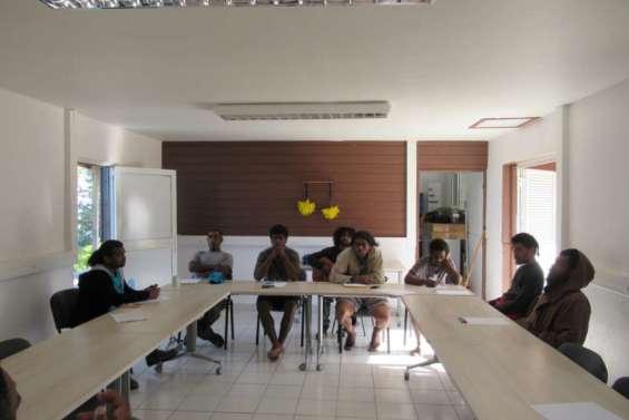 Tiga : de jeunes agriculteurs et sculpteurs en formation avecIninata Son'ore Ededo