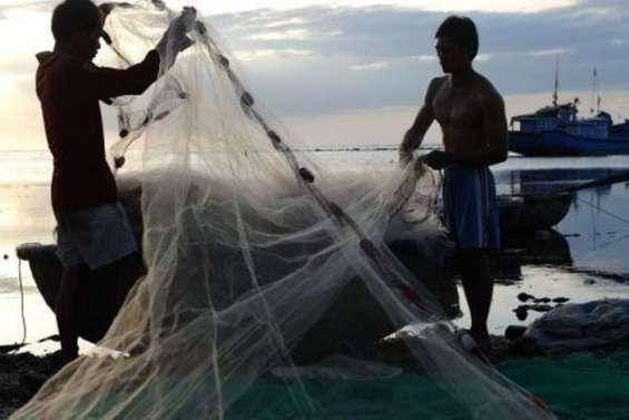 Pêche illégale: des Chinois et des Russes arrêtés