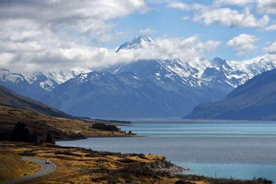Nouvelle-Zélande : moins de vaches, plus de voitures électriques