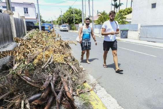 En cas de cyclone, les déchets verts doivent être mis à l'abri, rappelle la ville de Nouméa