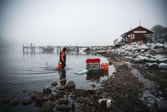 Dans les eaux glacéesde Suède, une plongeuse unique en son genre
