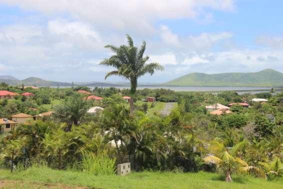 Drame de Port Ouenghi: