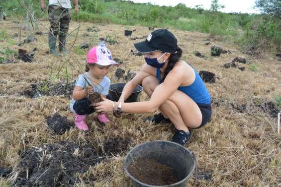 Mille arbres supplémentaires plantés au Domaine de Déva