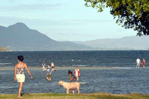 Pollution : baignade et activités interdites à la plage de Magenta