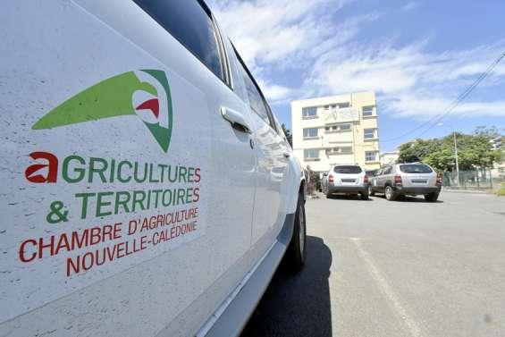 La Chambre d'agriculture visée par un rapport explosif sur sa gestion financière