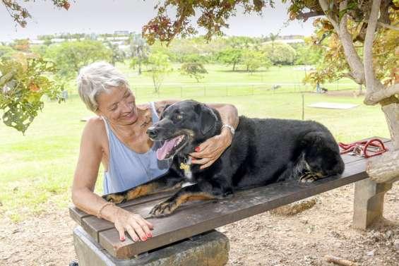 L'Apanc autorisée à faire adopter des animaux de la fourrière non réclamés