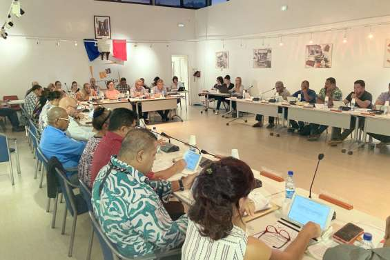 Païta : le conseil municipal se penche sur l'accompagnement au logement