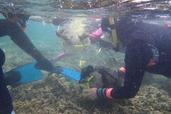 Une opération de nettoyage des fonds marins organisée samedi à la baie des Citrons