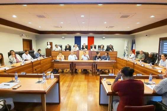 Un projet commercial de 6000m2 présenté aux élus de La Foa