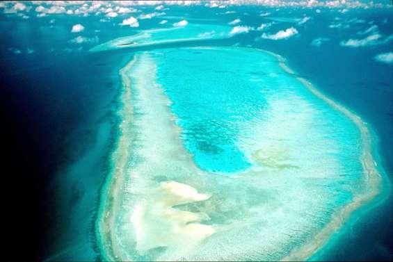 Du répit pourles coraux