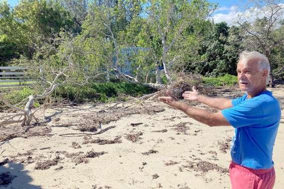 Il s'élève contre l'enrochement et le remblayage du littoral deNatéré
