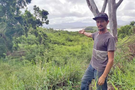 Nouméa : des jardins citadins à la place de l'ancienne fourrière de Tindu