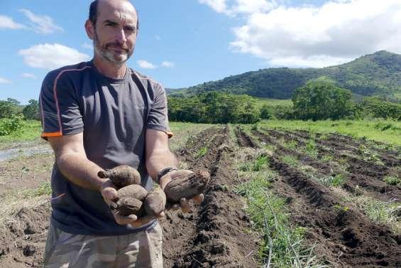 [VIDÉO] Sale temps pour les agriculteurs