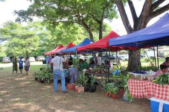 Premier grand marché océanien de l'année à Koné