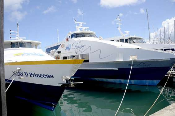 Le Mary D interrompt ses excursions à l'îlot Amédée durant deux mois