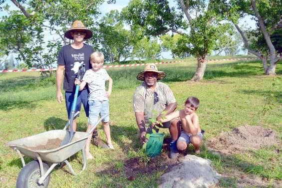 Cinq cents arbustes mis en terre à Poé, face à la Mutuelle des Fonctionnaires