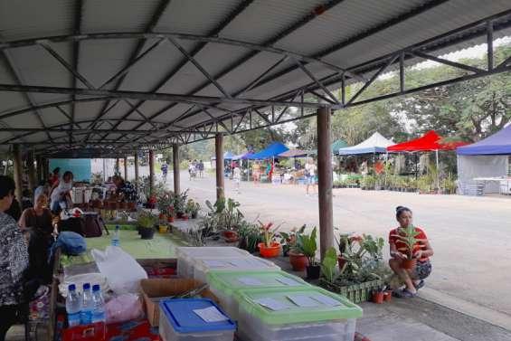 Nouveau marché, dimanche, au village