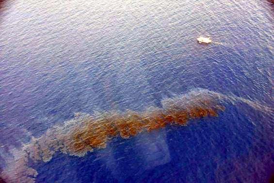 Importants moyens déployés en Corse contre une pollution aux hydrocarbures