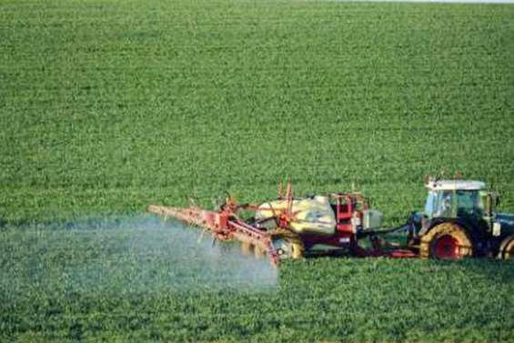 Loi climat: les engrais azotés font croître la tension au Sénat