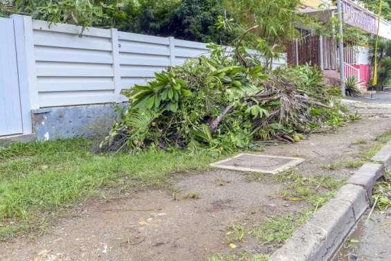 Au Mont-Dore, les déchets verts devraient être broyés à domicile à partir d'octobre