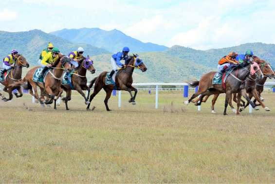 À Bourail, les chevaux repartent (enfin) au galop