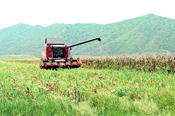 [GROS PLAN] Les OGM bientôt plus strictement encadrés?