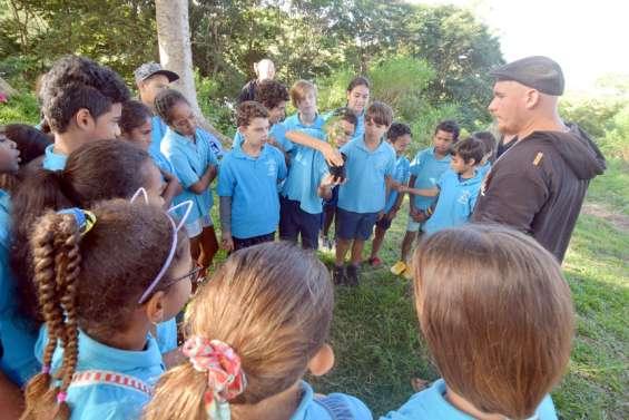 Nouméa : les écoliersde Marie-Courtot prennent laforêt sèche sous leur aile